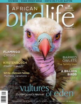 African Birdlife May/june 2019 Vol. 7 No. 4