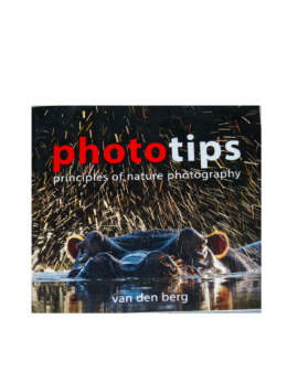 Photo Tips - Principles Of Photography SA