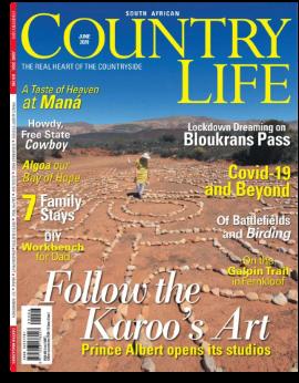 Country Life SA June 2020 image