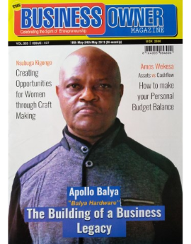 The Business Owner, May 2019 Vol 003, Issue 037 image